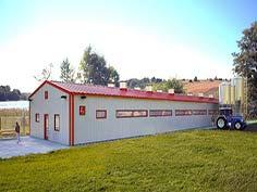 Hala agroindustriala pentru porci cu structura metalica usoara