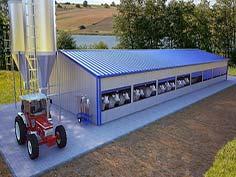 Hala agroindustriala vaci cu structura metalica